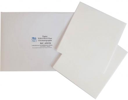 650330 Papier Whatman